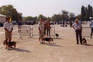 EXPO MACON SEPTEMBRE 2005